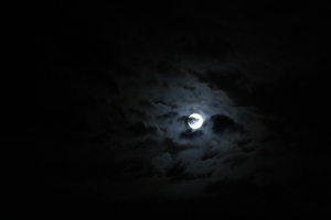 3_kuu